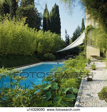 Stock Photography Of Swimming Pool In Italian Country Garden