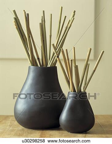 Pictures Of Two Matching Vases With Bamboo Sticks U30298258