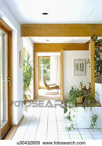 Houseplants, e, bianco, pavimento pavimentato, in, moderno, salone ...