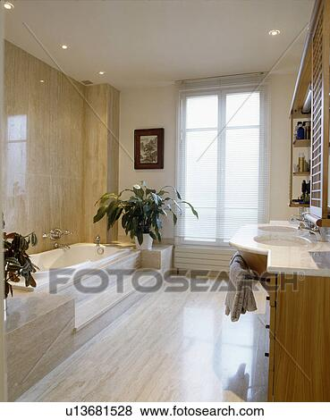 Large houseplants in modern marble bathroom with steps up to bath & Pictures of Large houseplants in modern marble bathroom with steps ...
