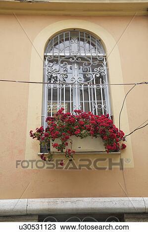 Fenêtre Voûtée à Fer Forgé Sécurité Grille Et Rouges