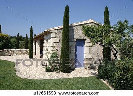 Banque De Photo  Grand Cyprs Arbres Dans Gravier Devant