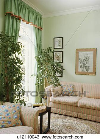 Houseplants in traditional pastel green living room with green curtains and  pink sofa Stock Image