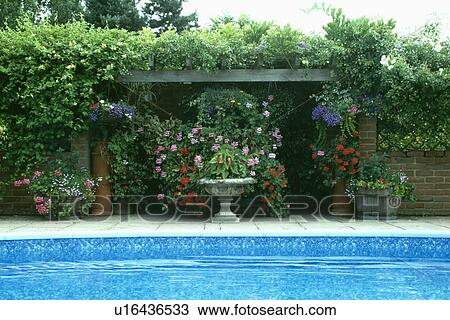 Stock foto houten pergola achter swimmingpool in land tuin