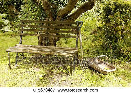 image vieux banc bois et bois trug et fourchette au dessous arbre dans jardin pays. Black Bedroom Furniture Sets. Home Design Ideas
