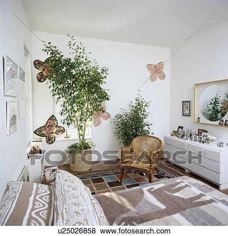 Images grand houseplants et papier papillons sur mur de blanc ann es quatre vingts - Fauteuil de chambre a coucher ...