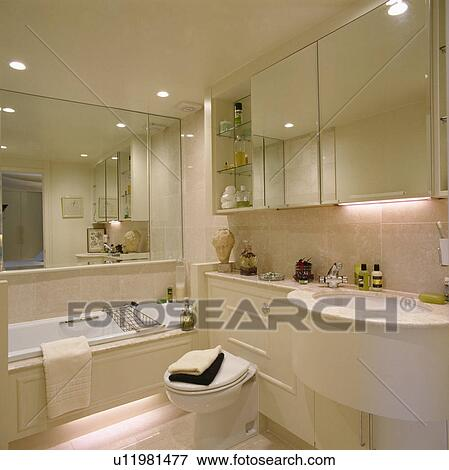 Mirrored Cabinet Above Built In Basin And Toilet In Modern