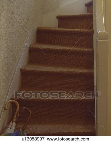 Avansert Sisal, teppe, på, fløte, trapp Arkivfoto   u13058997   Fotosearch DW-54