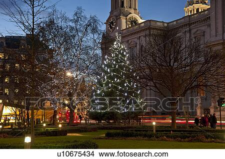 England Christmas Tree.England London City Of London Christmas Tree Decorated With Lights Outside St Paul S Cathedral Picture