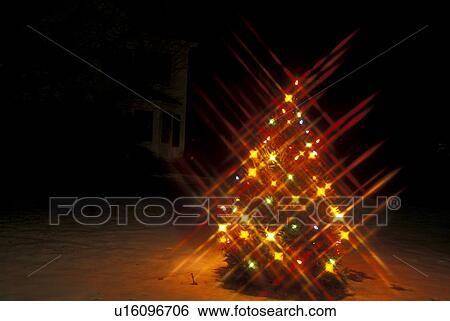 Colorful Christmas Lights On House.Christmas Tree Winter Stockbridge Berkshires Massachusetts Colorful Christmas Star Lights Decorate An Evergreen Tree On The Lawn Of A House At