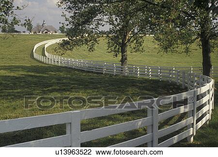 bauernhof zaun zeichnung weide stock foto pferd bauernhof zaun lexington ky kentucky blau gras land a weiß planke winde ihr weg entlang dass rollen grün weiden blau