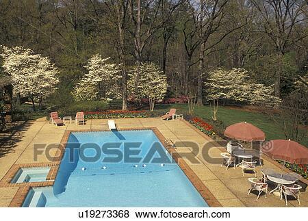 Swimming Pool Atlanta Georgia Ga At The Governor S Mansion In Spring