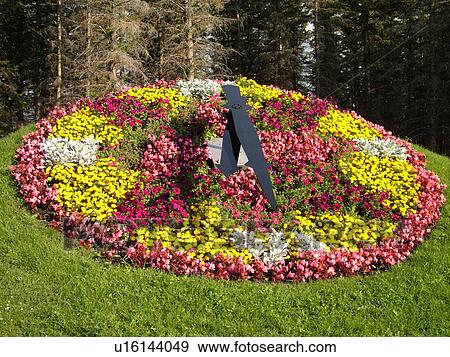 Stock Photo - Boissevain, Canada, MB, Manitoba, International Peace Garden, Floral