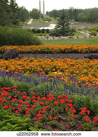 Stock Photo - Boissevain, Canada, MB, Manitoba, International Peace Garden, ND