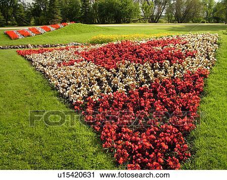Boissevain, Canada, MB, Manitoba, International Peace Garden, ND, North Dakota, USA, border, Canadian Flag made of flowers