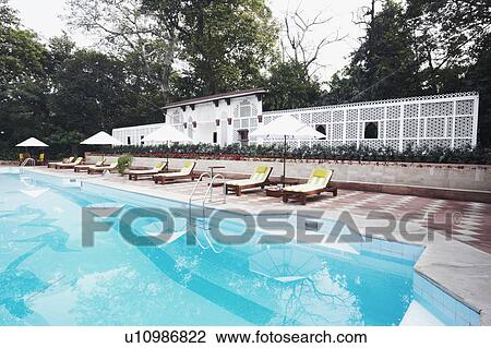 Tremendous Lounge Chairs At The Poolside Stock Image U10986822 Ncnpc Chair Design For Home Ncnpcorg