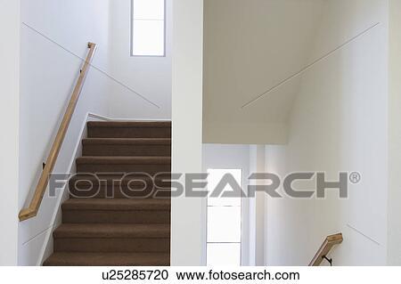Stock Fotografie Modernes Treppenhaus Mit Braun Teppich