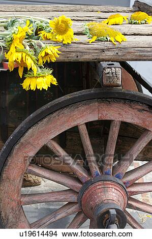 Detail Of Antique Wooden Wagon With
