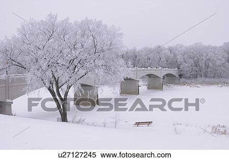 Winnipeg Manitoba, Canada Winter Scenes Stock Photography