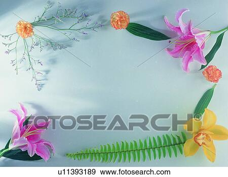 background border flower frame green lily yellow stock photo u11393189 fotosearch https www fotosearch com unz108 u11393189