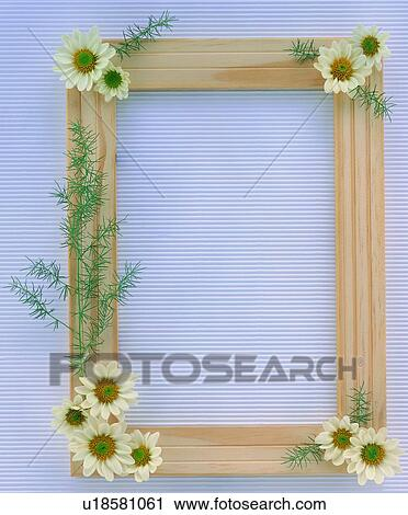 oblong leaf border nature frame white plant stock image u18581061 fotosearch https www fotosearch com unz108 u18581061