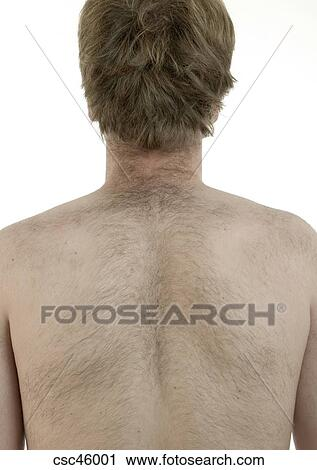 why do men have hairy backs
