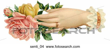 drawings of victorian illustration of a woman s hand with roses