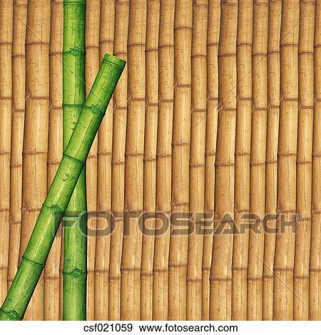Coleccion De Fotografia Dos Verde Bambu Palos Delante De - Palos-de-bambu